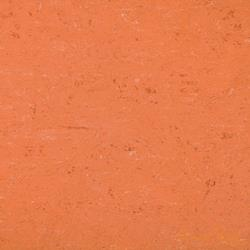 0016 Deep Orange