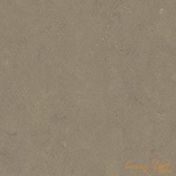 0558 Screed Grey
