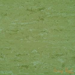 0011 Avocado Green