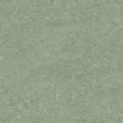 0043 Leaf Green