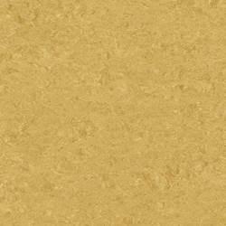 0072 Golden Yellow