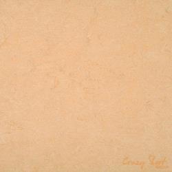 0098 Desert Beige