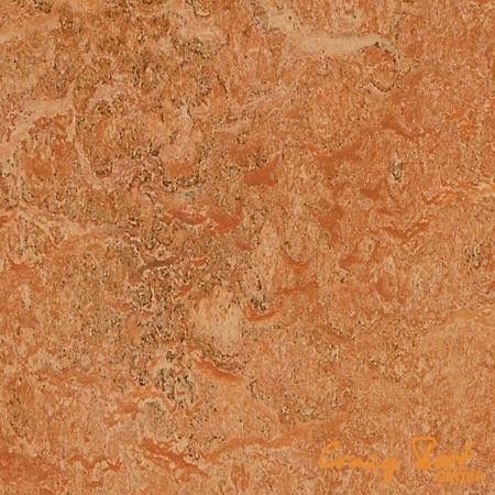 Натуральный линолеум Marmoleum Real 3174